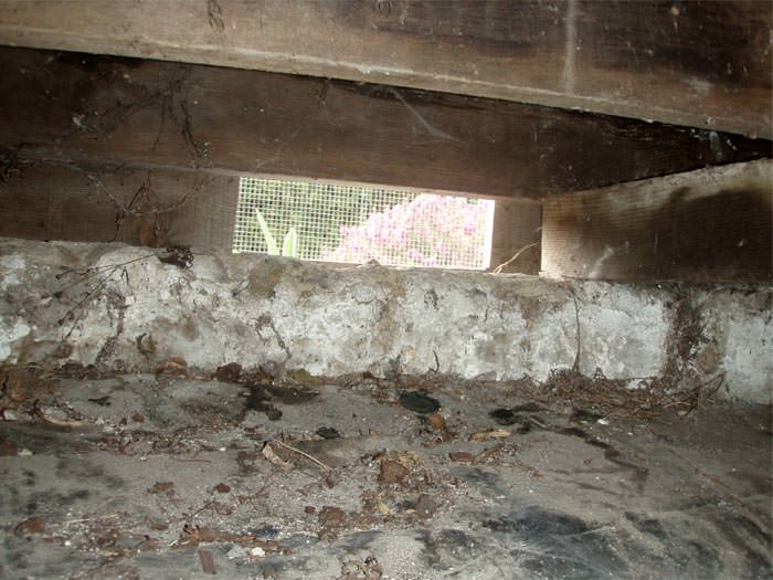 Crawl Space Repair In Wilmington Bear Dover De And