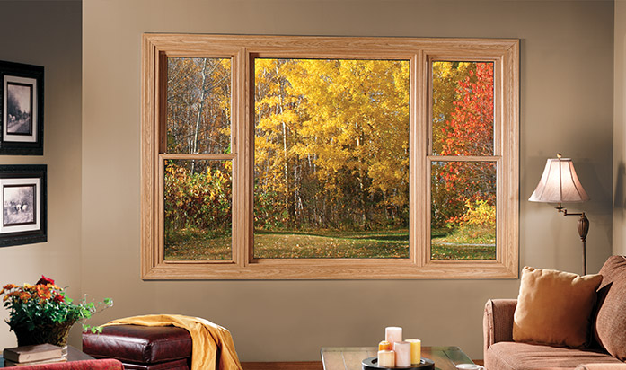 Replacement Window Installation Near Dover Bear